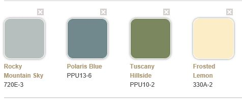 Can you paint will all the colors at Home Depot?